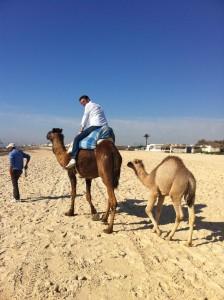 camera on camel